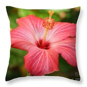 Florida Hibiscus Throw Pillow