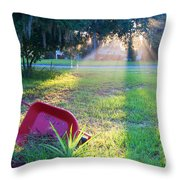 Florida Home Throw Pillow