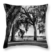 Florida Interior From Bok Gardens Throw Pillow