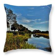 Florida Lands 7 Throw Pillow