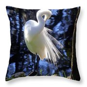 Florida Living Throw Pillow