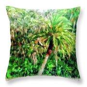 Florida Loop Throw Pillow