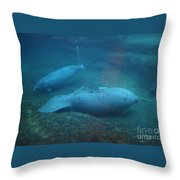 Florida Manatees Throw Pillow
