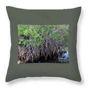Florida - Mangroves Throw Pillow