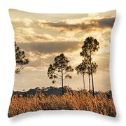 Florida Pine Landscape By H H Photography Of Florida Throw Pillow