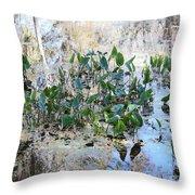 Florida Pond Throw Pillow