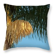 Florida Queen Palm Flower   Throw Pillow