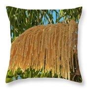 Florida Queen Palm Flower  Throw Pillow