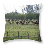 Florida Ranch Throw Pillow
