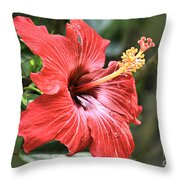 Florida Red Throw Pillow