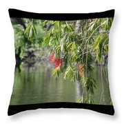Florida Reflections Throw Pillow