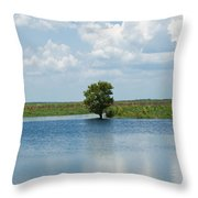 Florida River Backwater Throw Pillow