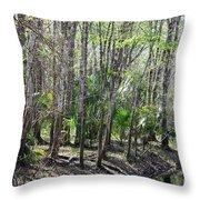 Florida Riverbank  Throw Pillow