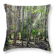 Florida Riverbank  Throw Pillow