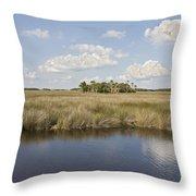 Florida Salt Marsh Throw Pillow