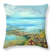 Florida Shore Throw Pillow