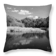 Florida Shoreline Throw Pillow