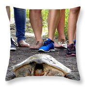 Florida Softshell Turtle 003 Throw Pillow