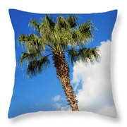 Florida State Tree Throw Pillow