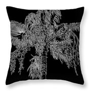 Florida Thatch Palm In Black And White Throw Pillow