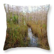Florida Trail Big Cypress Throw Pillow