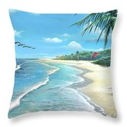 Florida Treasure Throw Pillow