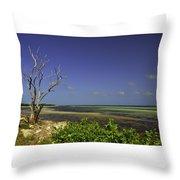 Florida Tree Throw Pillow