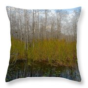 Florida Wilderness Throw Pillow