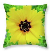 Florida - Yellow - Wildflower Throw Pillow