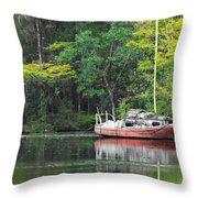 Floridian Fall Throw Pillow