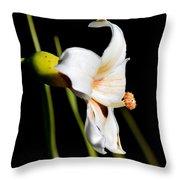 Floss Silk Bloom Throw Pillow