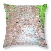 Flow Rut / Shadow Throw Pillow