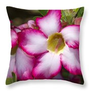 Flower 12 Pink White Yellow Throw Pillow