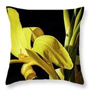 Flower 29f, Ny, 16 Throw Pillow