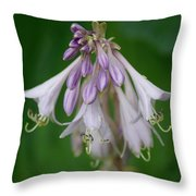 Flower 5 Throw Pillow