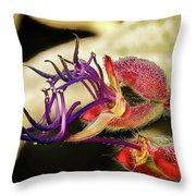 Flower 55f, Ny, 16 Throw Pillow