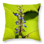 Flower 6 Throw Pillow