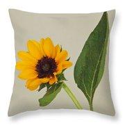 Flower 8-11 Throw Pillow