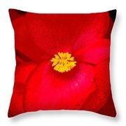 Flower 8 Enhanced Throw Pillow