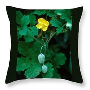 Flower And Fruit Throw Pillow