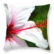 Flower Beauty Throw Pillow by Riad Belhimer