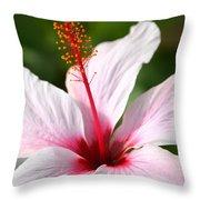 Flower Beauty2 Throw Pillow