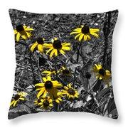 Flower Black Eyed Susan Throw Pillow