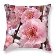 Flower Blossoms Art Spring Trees Pink Blossom Baslee Troutman Throw Pillow