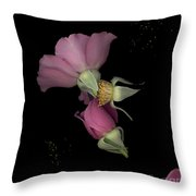 Flower Box Purple Cut Throw Pillow