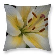 Flower Close Up 1 Throw Pillow
