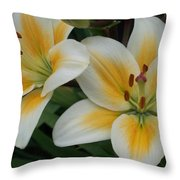 Flower Close Up 2 Throw Pillow