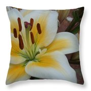 Flower Close Up 3 Throw Pillow