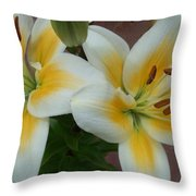 Flower Close Up 5 Throw Pillow