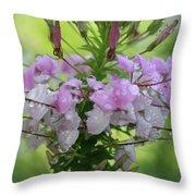 Flower Dew Beauty Throw Pillow